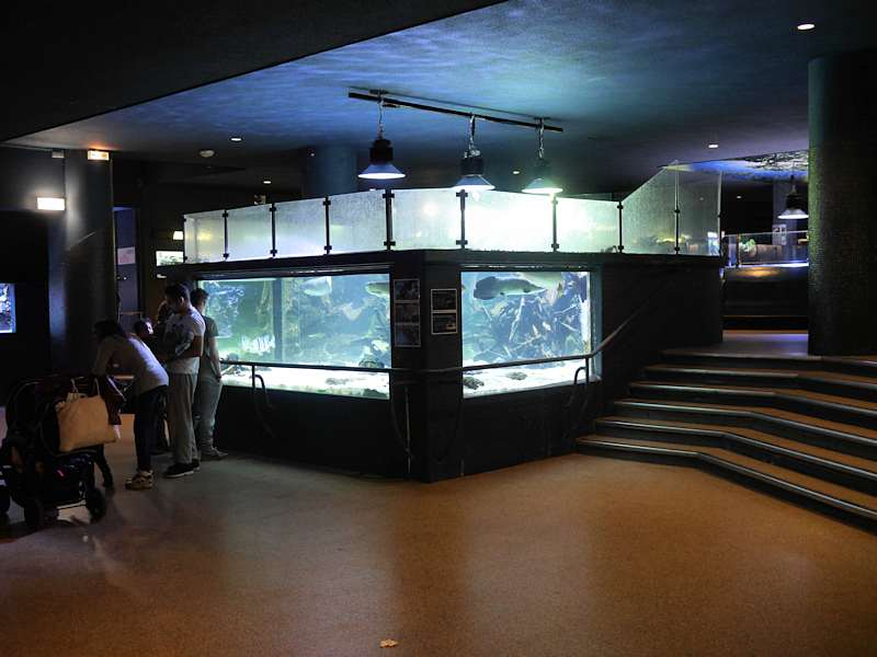 aquarium tropical de la porte dor 233 e