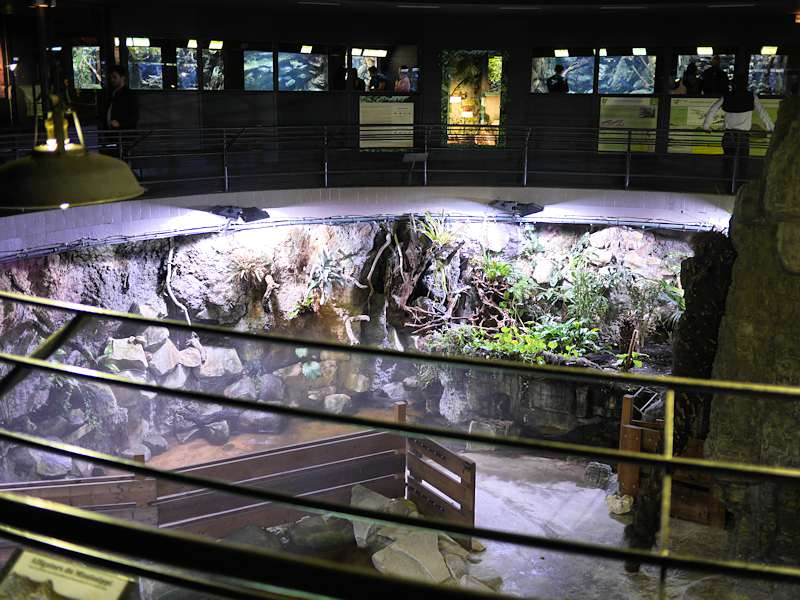 Aquarium tropical de la porte dor e - Aquarium tropical de la porte doree ...